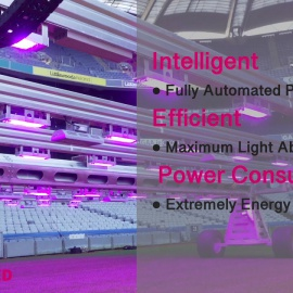 """RSI' Grass Grow Lighting Redefining """"perfect"""" in """"Perfect Pitch Management"""""""